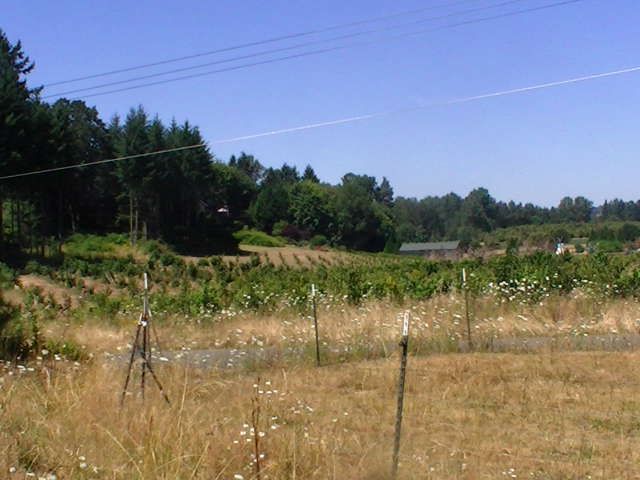 S. Haines Rd  Canby